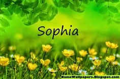 Sophia Name Wallpapers Sophia ~ Name Wallpaper Urdu Name Meaning