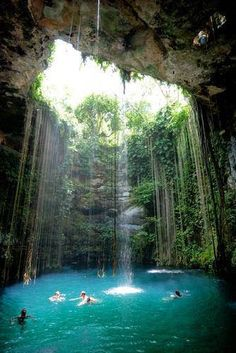 Dive in! Yucatan Mexico