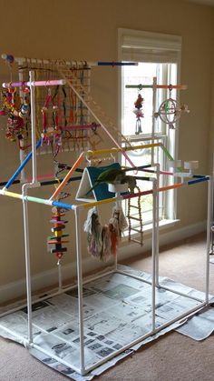 Amazing play place for small parrots! If you have the time and creativity to make a pvc palace, go for it! Diy Parrot Toys, Diy Bird Toys, Parrot Perch, Bird Perch, Bird Play Gym, Parrot Play Stand, Diy Bird Cage, Bird Stand, African Grey Parrot