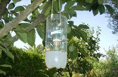 Cómo hacer 3 Trampas caseras para moscas