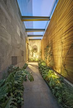 CSF House,© Héctor Armando Herrera