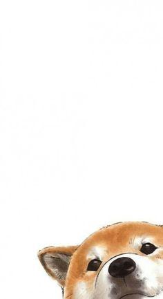 Cute dog phone wallpapers · shiba inu shiba inu, most beautiful Wallpaper Tumblrs, Cute Dog Wallpaper, Dog Wallpaper Iphone, Tier Wallpaper, Drawing Wallpaper, Kawaii Wallpaper, Animal Wallpaper, Apple Wallpaper, Screen Wallpaper