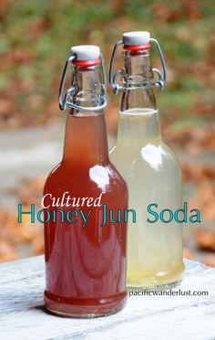 My Love Affair With Honey Jun Soda. Make your own DIY Probiotic Soda Pop! Over the past few months I have developed a new kindred friendship with Honey Jun Soda, also called Jun Tea. My new Best Friend Forever, Jun, is a cousin of Kombuch, and is made in a similar fashion. Both are SCOBYs...