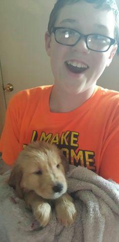 Golden Retriever puppy ( bath time )  6 weeks old