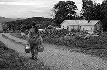 Threshold Collaborative | Conversations With Farm Women Farm Women, Action Research, Oral History, Conversation, Hands, Couple Photos, Garden, Couple Shots, Garten