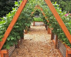 Raised bed garden design raised bed with trellis family food garden raised bed herb garden design . Culture D'herbes, Raised Bed Garden Design, Diy Garden Bed, Easy Garden, Garden Spaces, Raised Beds, Raised Bed Gardens, Raised Garden Beds Cinder Blocks, Raised Bed Plans