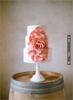 peach wedding cake | CHECK OUT MORE IDEAS AT WEDDINGPINS.NET | #weddingcakes