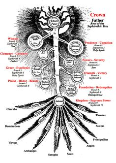 Tree of Life (in regards to the Major/Minor Arcana)