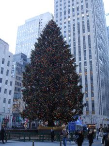 Top 10 activities you must experience when visiting New York at Christmas