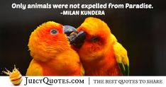 """Only animals were not expelled from Paradise. Poem Quotes, Daily Quotes, Best Quotes, Life Quotes, Animal Poems, Animal Quotes, Expelled From Paradise, Paradise Quotes, Post Animal"