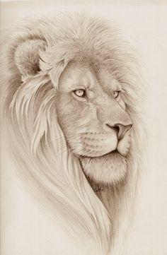 Lion drawing: would make a beautiful tatt!