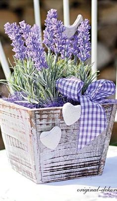 White wooden planter filled with lavender                                                                                                                                                     More