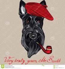 """Résultat de recherche d'images pour """"illustration vintage chien scottish"""""""