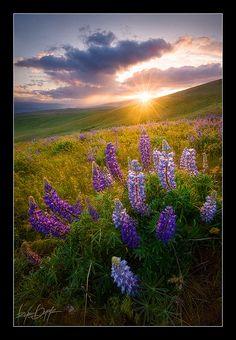 Amazing landscape photography by Ryan Dyar