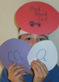 Purpose of Respiratory System Game