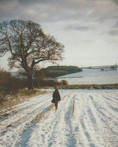 winter fields - no sound but the crunch of footsteps in the snow