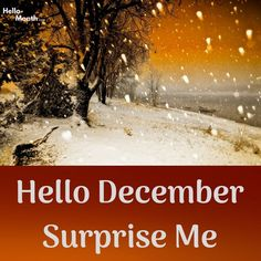 Surprise Me December 2018 Calendar Template, 2019 Calendar, Hd Picture, Picture Quotes, Welcome December Quotes, December Images, New Month Wishes, New Month Quotes, Cover Pics For Facebook