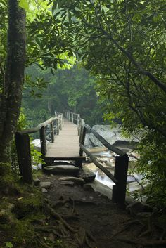 Chimney Tops is a favorite hike among the locals and visitors alike to the Great Smoky Mountains National Park
