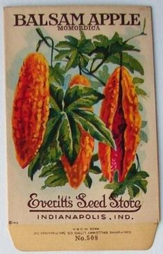 Antique vegetable seed packet, envelope, printed by Galloway Litho Co. Garden Catalogs, Plant Catalogs, Seed Catalogs, Vintage Labels, Vintage Cards, Vintage Gardening, Organic Gardening, Decoupage, Vintage Seed Packets