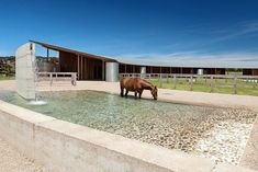 Mornington Peninsula equestrian centre wrapped by earth wall and shaded by expansive zinc roof | Architecture And Design