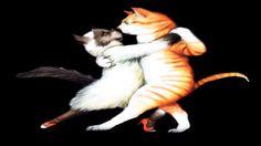 Ebunny - Heart of the Tango (Dancing Cat | Fun Music Video | Hard Rock)