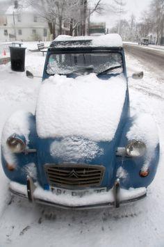 snowy deuche