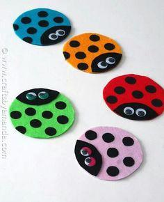 CD ladybug