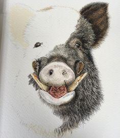 Day 4 Wild Boar #art #illustration #watercolor #wildboar #tusks #trophy #game #gamekeeper #hunting #mancave #print #painting #paynesgrey #twotone #sunday #bruton #somerset #stalk #southwest #shootingseason by sarah_ellis14