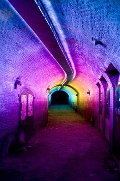 Trajectum Lumen: at night, the city lights up