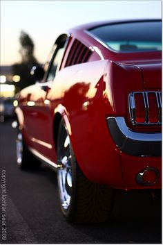 Mustang, my dad's dream car, he had a white one, '65 2plus2 Fastback, brings back memories, we had sooo much fun in that car!