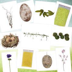 Paastakken en materialen om zelf te decoreren!! Meerdere soorten paastakken . eitjes en natuurlijke materialen. Webshop www.decoratietakken.nl Om