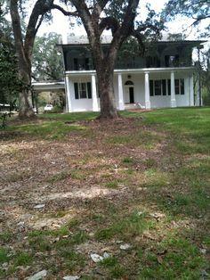 The New House! Louisiana Plantations, Stonehenge, New Homes, Plants, House, Home, Plant, Homes, Planets