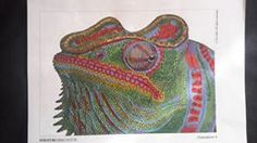 No 94 Deborah Swiney Panther Chameleon Prisma Premier Coloured Pencils