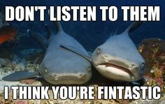 Pin for Later: Hilarious Memes That Prove Sharks Are Just Misunderstood Friendly Shark Is Friendly Source: Quickmeme