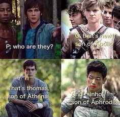MINHO son of Aprohdite! Haha. Newt should be Athena cuz Newt is wise. Thomas should be the son of Apollo. And MINHO well he's fine as the sassy son of Aphrodite.