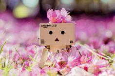 Una foto con Sakuras by Missorys on DeviantArt Amazon Box, Danbo, Cute Box, Anime Girl Drawings, Little Boxes, Box Art, Deviantart, Wallpaper, Pink