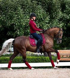 Why do you think is it essential to consider the proper suggestions in acquiring the equestrian boots to be utilized with or without any horseback riding competitors? Equestrian Boots, Equestrian Outfits, Equestrian Style, Riding Hats, Horse Riding, Riding Helmets, Dressage Saddle, Horse Tack, Types Of Horses