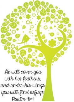 He will cover ...