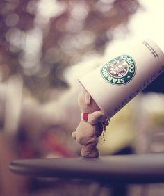 Teddy bear, Starbucks coffee