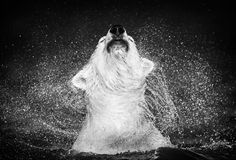 David Yarrow #Polar_