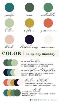 Color Palette Rainy Day Monday by Erika Firm