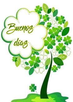 Good Day Quotes, Morning Quotes, Daily Quotes, Morning Thoughts, Good Morning, San Patrick Day, Lucky Plant, Prayers For Healing, Love Phrases