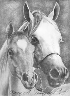 I love pencil art #Arabians #Art