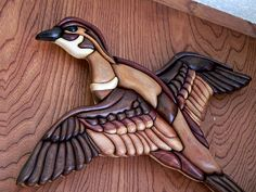 wood duck in flight | Flickr - Photo Sharing!