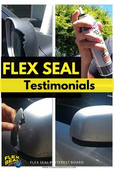Flex Shot Projects Images Seal