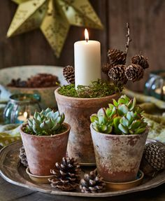 Lav fint pynt med kogler, grene og mos - tips og tricks | ISABELLAS Natural Christmas, Nordic Christmas, Rustic Christmas, Christmas 2019, All Things Christmas, Christmas Wreaths, Christmas Crafts, Seasonal Decor, Fall Decor