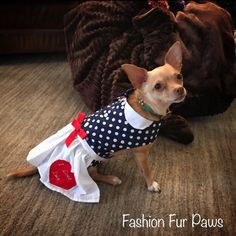 Excited to share this item from my shop: I Love Lucy Dog Costume, Lucy Dog Costume, Dog Dress, Lucy Dog dress, I Love Lucy Dog costume Lucy Dresses, Dog Dresses, I Love Lucy Costume, Small Dog Costumes, Apron Dress, Dog Names, I Love Dogs, Small Dogs, Boston Terrier