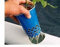 Small Hydroponic Systems - Bing Images