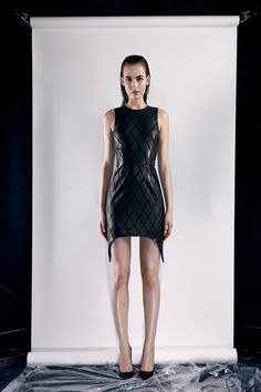 Cushnie et Ochs Resort 2014 Collection, I have the A-Line version from this collection, but nothing like a leather dress to make you feel AMAZE on a fall day :)