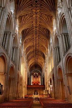 Inside the 900 year old Norwich Cathedral - went here every morning for assembly!